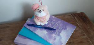 Zo schrijf ik: mijn schrijfvoorkeuren | HMVVDV