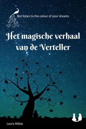 Cover Het magische verhaal van de Verteller