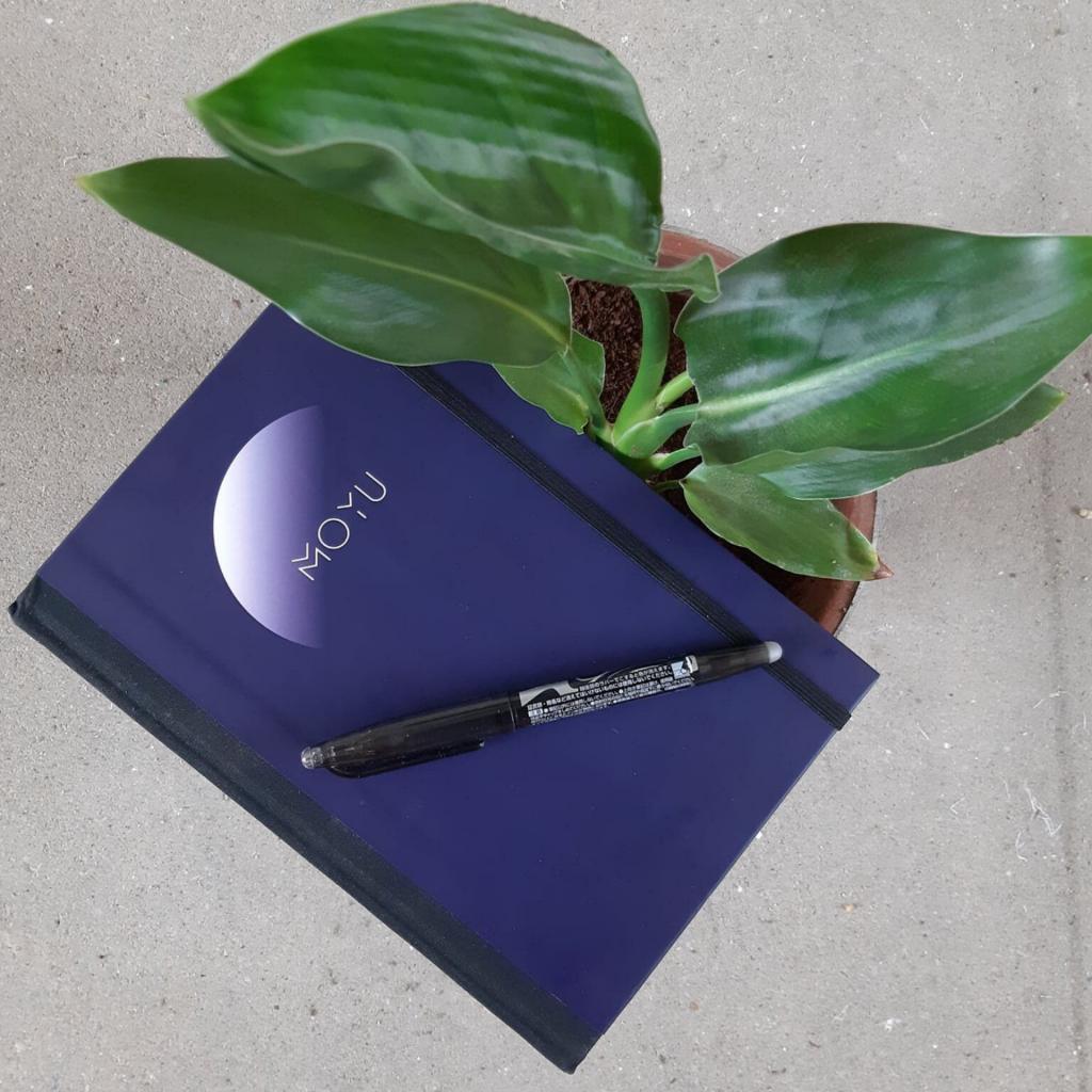MOYU notitieboekje uitwisbare bladzijden | Het magische verhaal